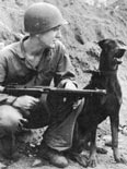 Doberman Andy at Bougainville during WWII